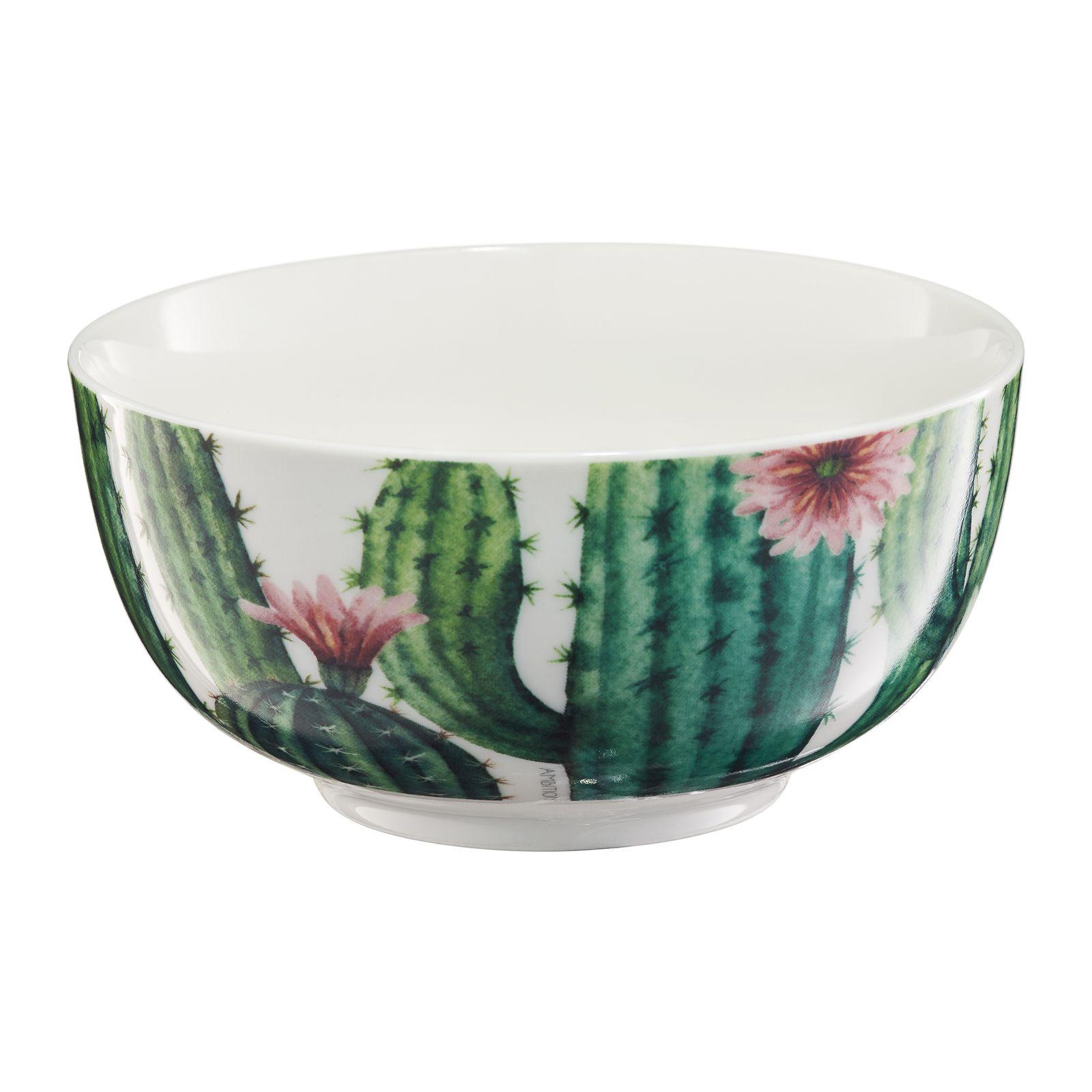 Salaterka Cactus 13 cm kaktus AMBITION